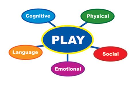 Supporting Cognitive Development: Experiences and
